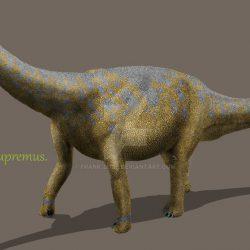Camarasaurus by Frank Lode