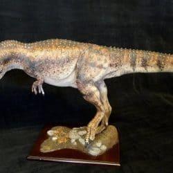 Daspletosaurus by Martin Garratt