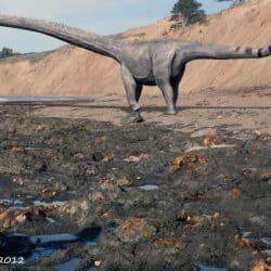 Diplodocus by Nobu Tamura