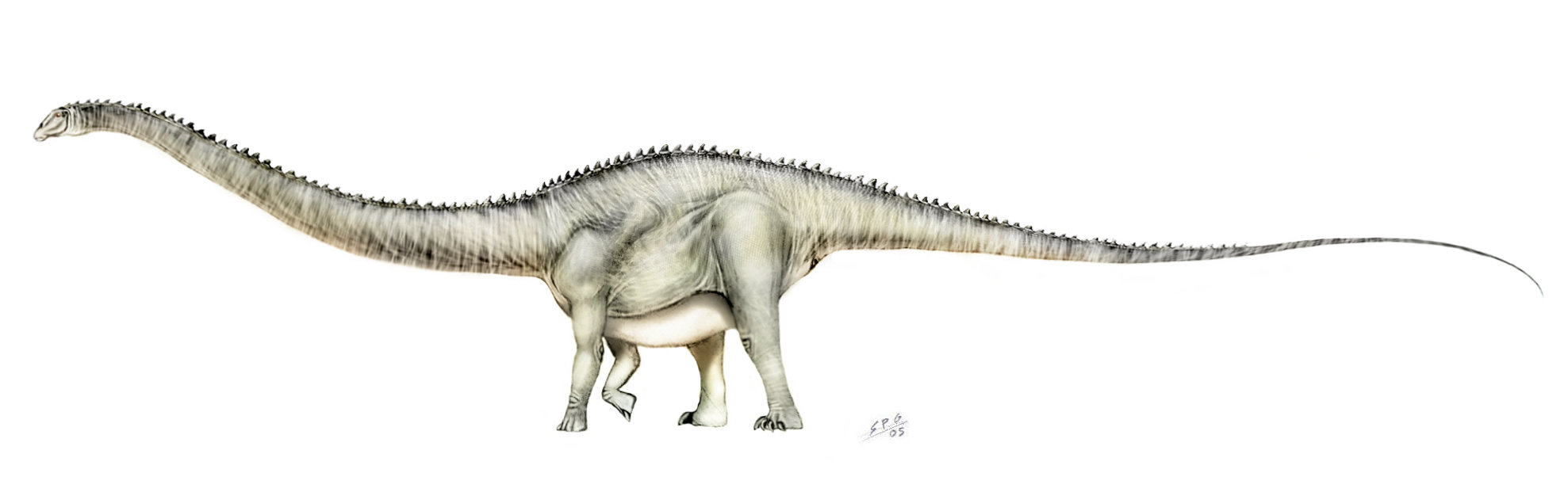 Supersaurus by Sergio Perez