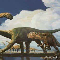 Diplodocus by Karen Carr