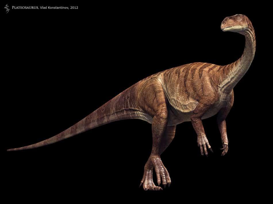 Plateosaurus by Vlad Konstantinov