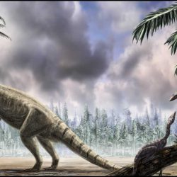 Plateosaurus by Alain Beneteau