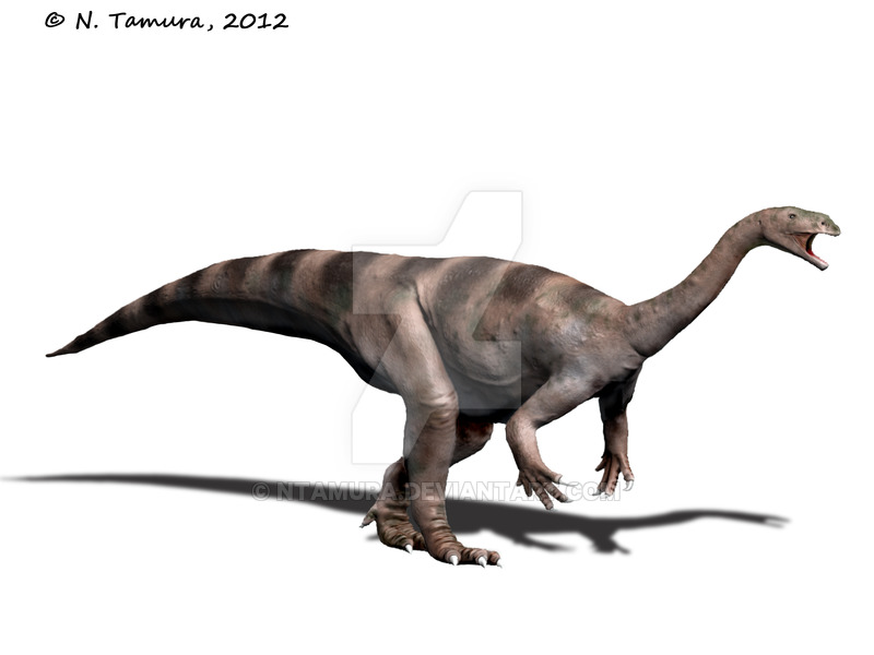 Plateosaurus by Nobu Tamura