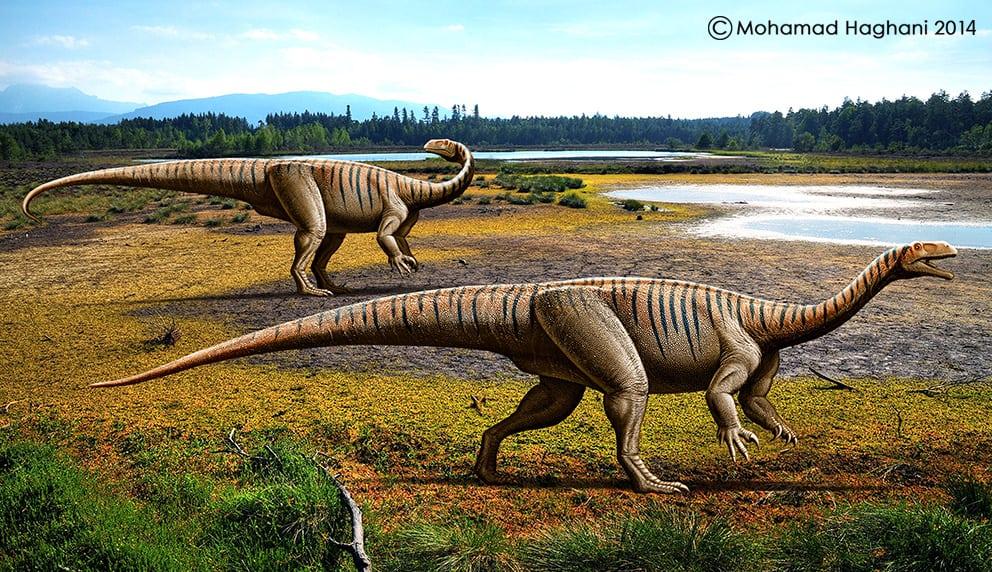Plateosaurus by Mohamad Haghani