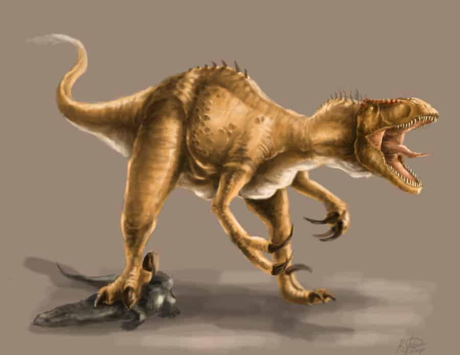 Megaraptor by Raphael