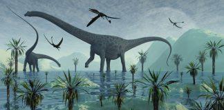 Diplodocus by Mark A Stevenson