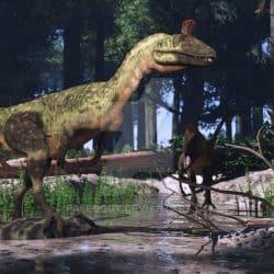 Cryolophosaurus by Jk