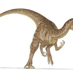 Cryolophosaurus by Sam