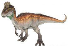Cryolophosaurus by Melissa Frankford