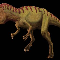 Cryolophosaurus by Frank Lode