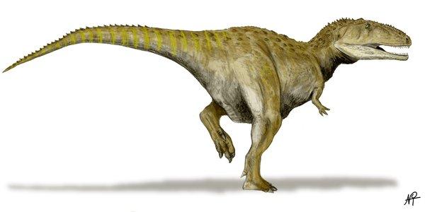 Mapusaurus by Nobu Tamura