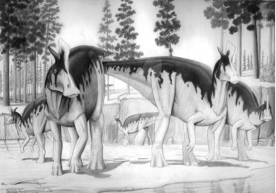 Lambeosaurus by Giorgio Favaccio