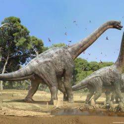 35_brachiosaurus_damir
