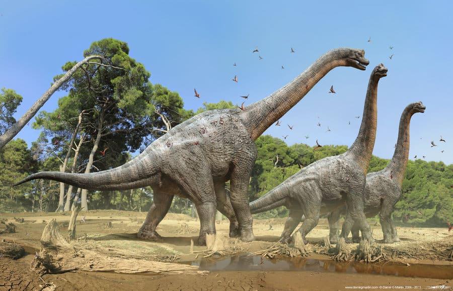 Brachiosaurus by Damir