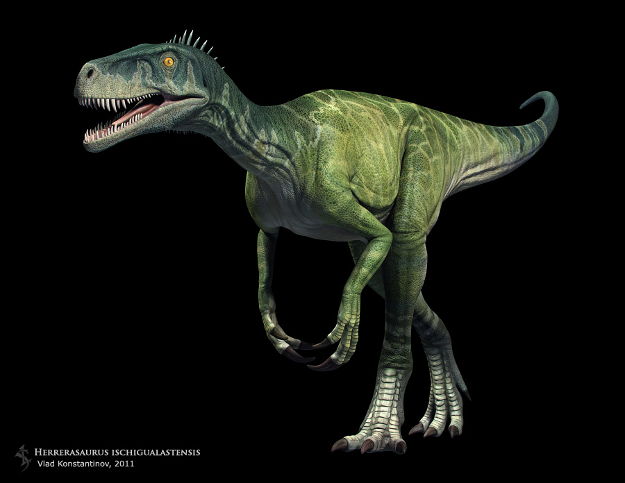 Herrerasaurus Facts And Pictures