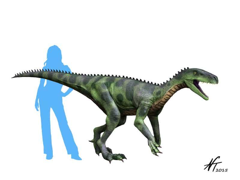 Herrerasaurus by Nobu Tamura