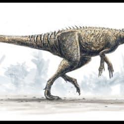 Herrerasaurus by Alain Beneteau
