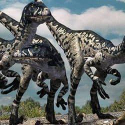 Dromaeosaurus by Doruk