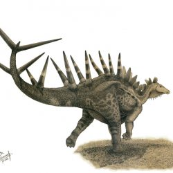 Kentrosaurus by Vladimir Nikolov