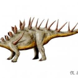 Kentrosaurus by Nobu Tamura