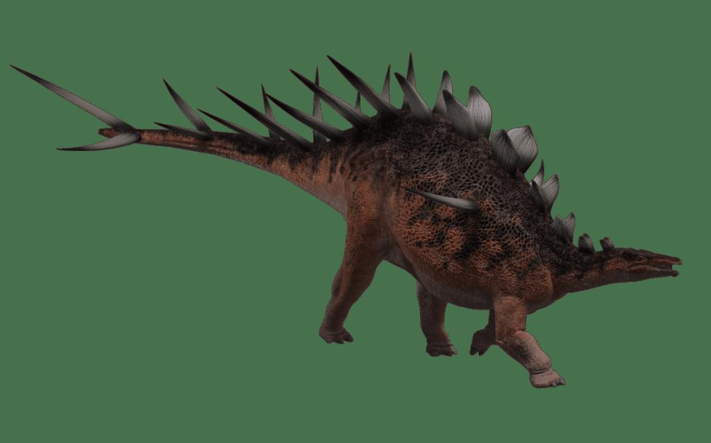 Kentrosaurus by Wayne