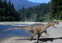 Metriacanthosaurus by Nobu Tamura
