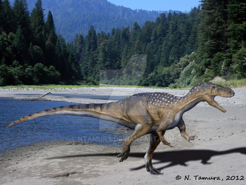 Metriacanthosaurus Metriacanthosaurus - F...