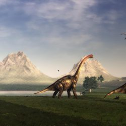 37_brachiosaurus_ikechi1