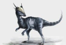 Stygimoloch by Raphael