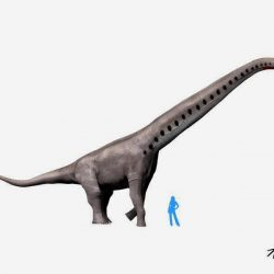 Brachiosaurus by Nobu Tamura