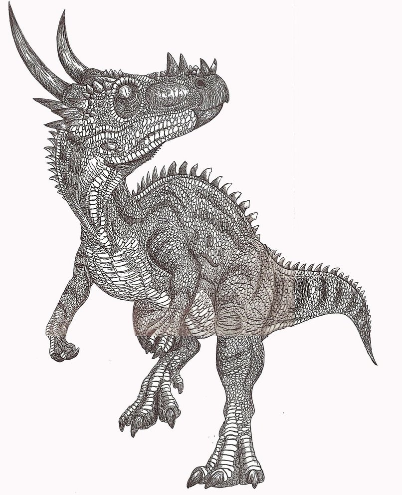 Dracorex Facts and Pictures