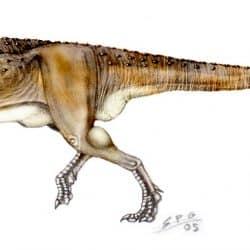Abelisaurus by Sergio Perez