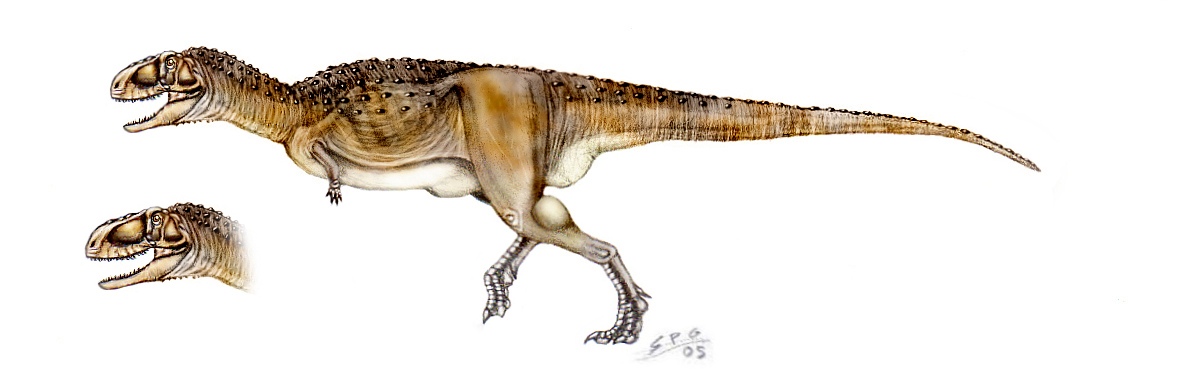 Abelisaurus - Facts and Pictures