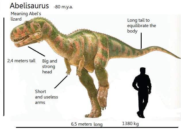 Abelisaurus by David Orgambides Garcia