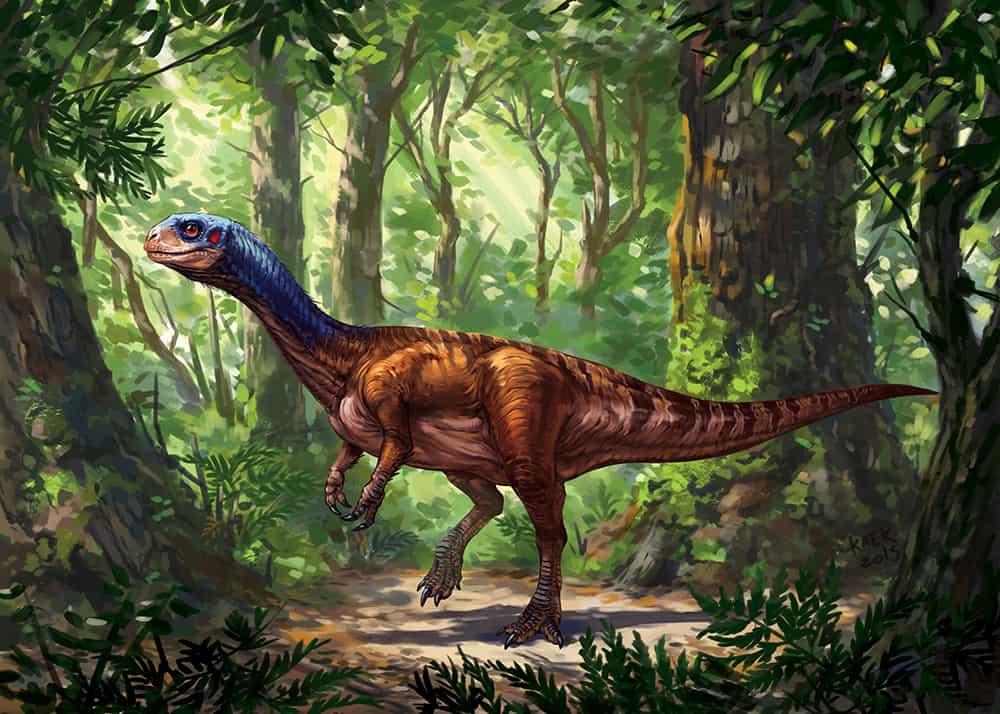 Chilesaurus by Kaek Starkiller