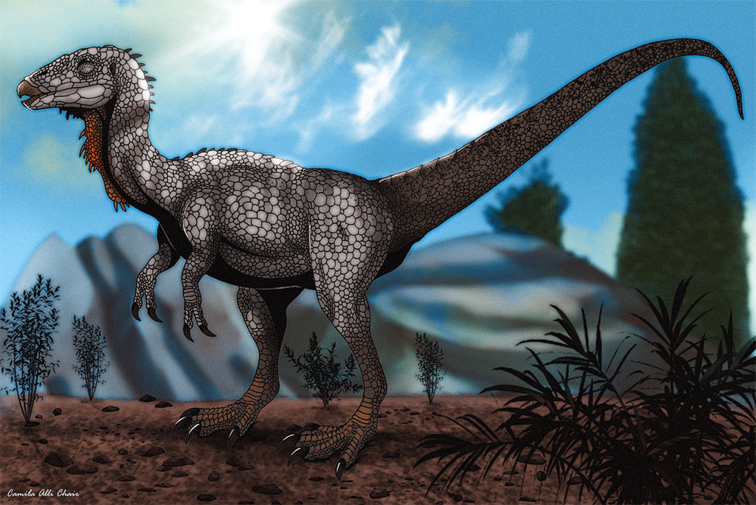 Chilesaurus by Camila Alli Chair