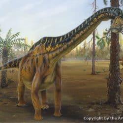 41_brachiosaurus_todd_marshall