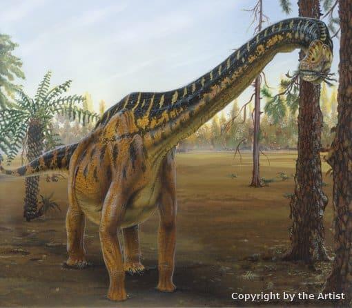 Brachiosaurus by Todd Marshall