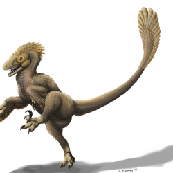 Balaur by Emily Willoughby
