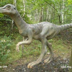 Ornithomimus by Jozef Culak
