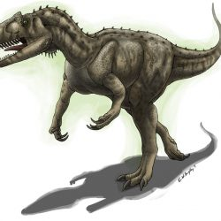 42_allosaurus_emily_willoughby