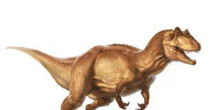 Allosaurus by L. D. Austin