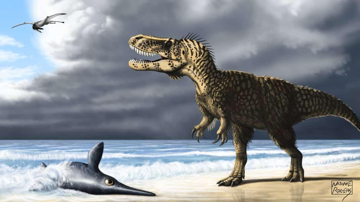 Torvosaurus by Nathan Rogers