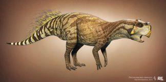 Psittacosaurus by Vlad Konstantinov