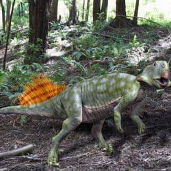 Psittacosaurus by Nobu Tamura