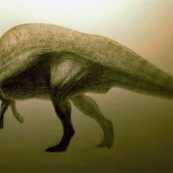 Ouranosaurus by Juanosaurus