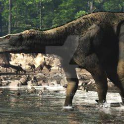 Muttaburrasaurus by Jk