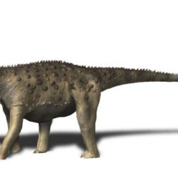 Saltasaurus by Nobu Tamura