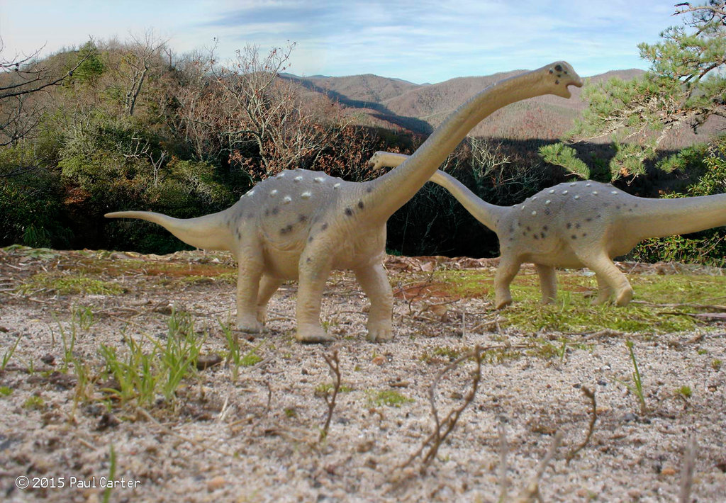 Saltasaurus by Paul Carter